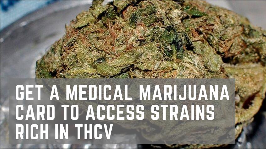 THCV rich strains