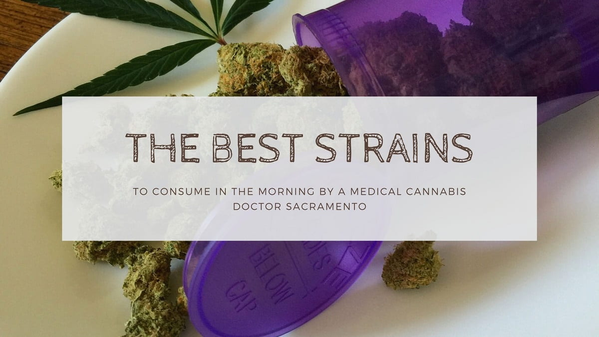 The Best Strains to Consume in The Morning by a Medical Cannabis Doctor Sacramento
