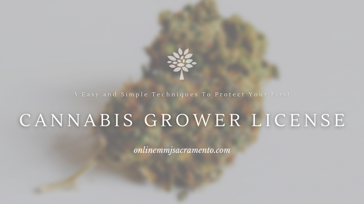 Cannabis Growers License