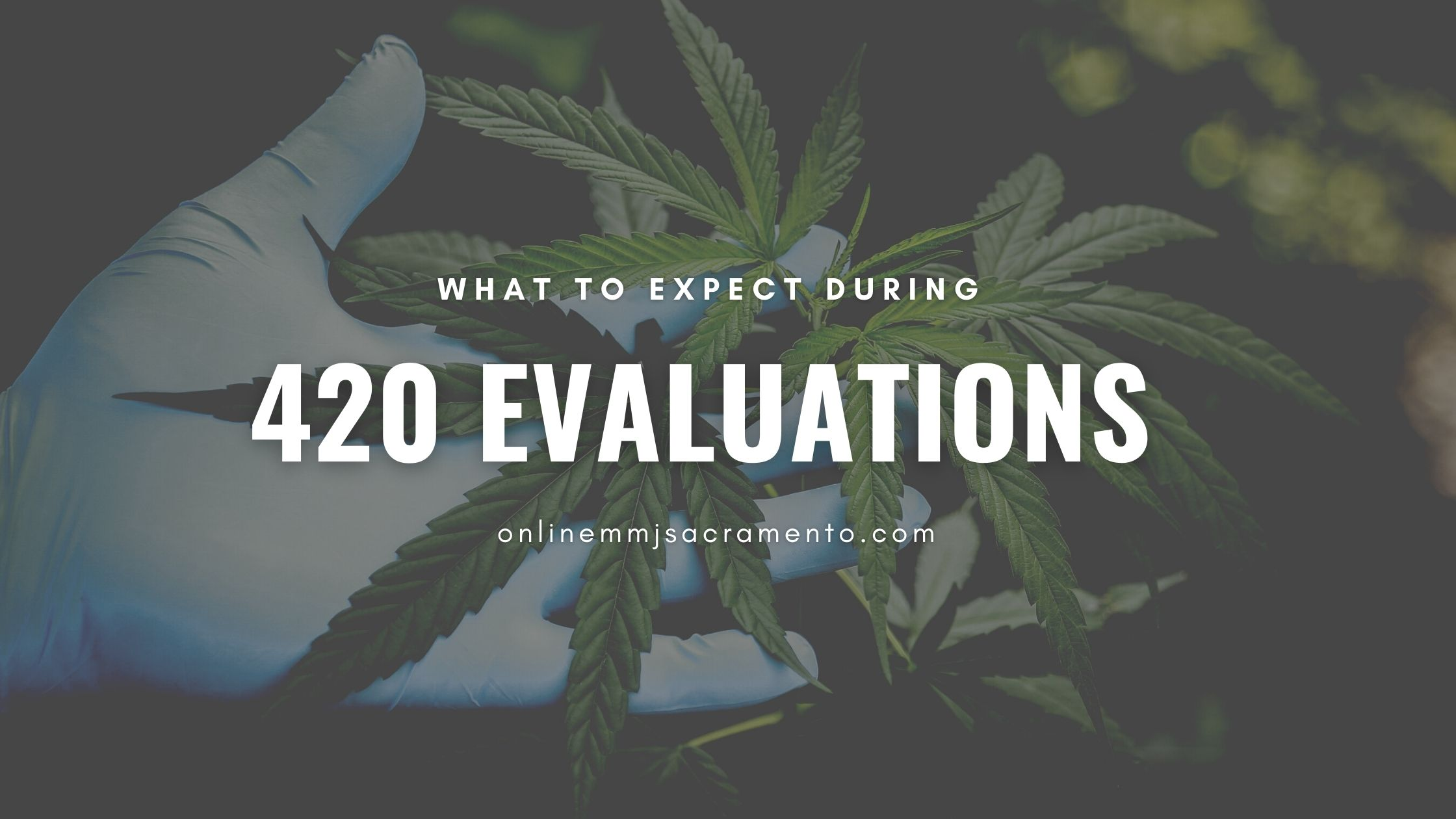 What To Expect During 420 Evaluations